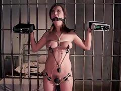 Jail, Babe, BDSM, Bound, Brunette, Jail