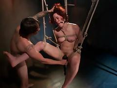 All, Bound, Vibrator, Tied Up, Hogtied
