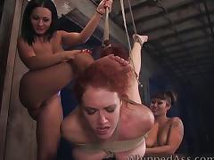 All, Anal, Asian, Assfucking, BDSM, Blonde