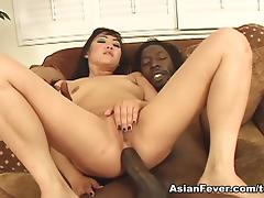 All, Anal, Asian, Ass, Assfucking, Big Cock