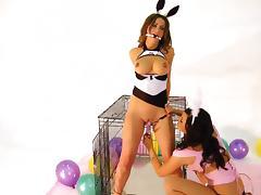 Bunny, BDSM, Bunny, Clothed, HD, Lesbian