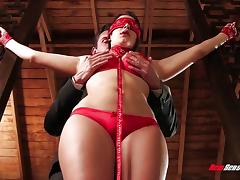 Bound, Bound, Tied Up, Hogtied