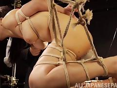 Asian bondage slave tied up and played with like a piece of meat