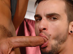 Phenix Saint & Rocco Reed in Get Used To It Video