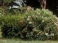 Gli Amori Bestiali Di Luana (1990)
