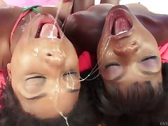 Sloppy spit soaked blowjobs from two cute black girls