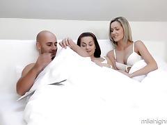 free Bra porn tube