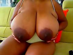 gros seins black
