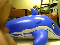 mating inflatable blue whale 2