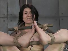 Fascinating slaved bimbo in bondage yelling while being tortured