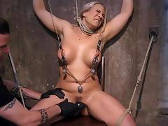 Hogtied, Babe, BDSM, Big Tits, Blonde, Boobs