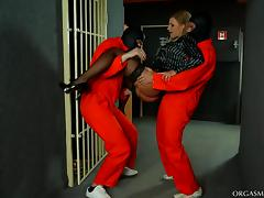Prisoners pull out their dicks for a hot blonde to suck them off