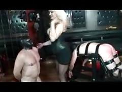free Brutal porn videos