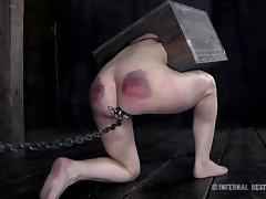 Bondage, BDSM, Bondage, Brunette, Fetish, Toys