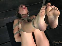 Blonde cutie in bondage penetrated with various sex toys