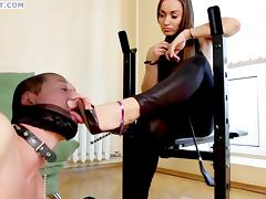 Kinky stallion really likes being trampled by a delicious brunette