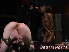Teasing edged handjob blowjob cumshot compilation Sexy youth