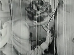 Getting Fucked at the Dentist 1930 porn video
