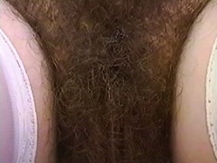 Hairy Cuties Porn Tube Videos