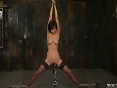 All, Bondage, Cum, Gagging, Legs, Masturbation