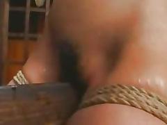 Wooden Horse bdsm bondage slave femdom domination