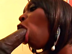 Skyy Black sucks a nice black dick just for cum