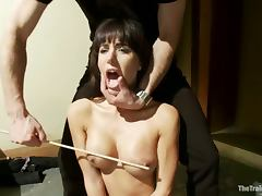 All, BDSM, Bondage, Brunette, Spanking