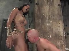 Ebony candy with huge tits has a cock bigger that Chad's