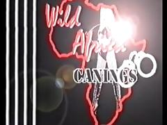 Wild Africa Canings Female Prison Anguish porn video