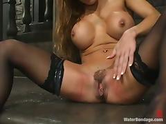 All, BDSM, Bondage, Femdom, Spanking