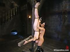 All, BDSM, Bondage, Bound, Femdom, Strapon