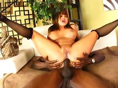 Ava Devine interracial anal