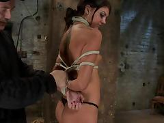 All, BDSM, Big Cock, Blowjob, Bondage, Bound