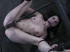 Bondage, BDSM, Bondage, Brunette, Humiliation