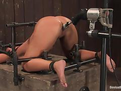 Bound, Anal, Ass, Assfucking, BDSM, Bondage