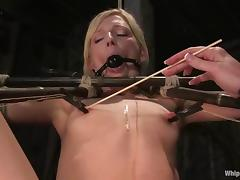 Refined methods of torturing to descry to this femdom