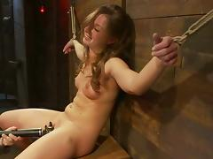 Nice and pretty Lauren Barnett gets toyed in bondage video