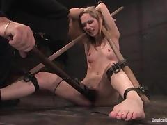 Calico gets bound and tormented and enjoys it much