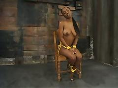 Hot boobs of an ebony girl Yellow Kitty are tied up