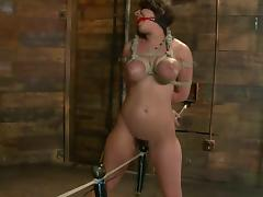 All, BDSM, Bondage, Tan Lines