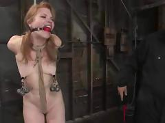 All, BDSM, Blonde, Bondage, Cute, Horny