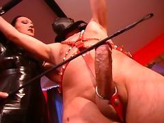 All, BDSM, Femdom, Mistress, Slave, Stockings