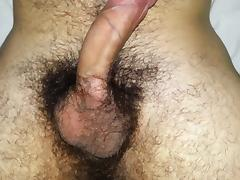 My hairy erected penis