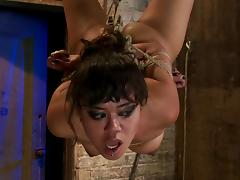Hogtie suspension with a vibrator in her tight pussy
