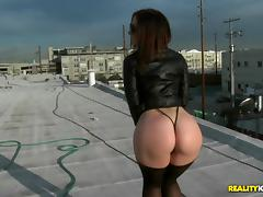 MonsterCurves - Roof top romp